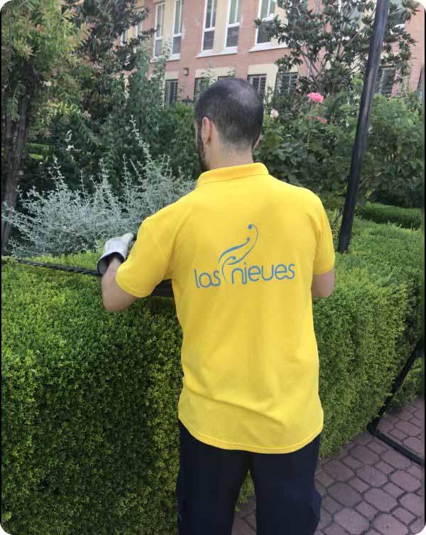 Hombre realizando el servicio de jardinería Las Nieves