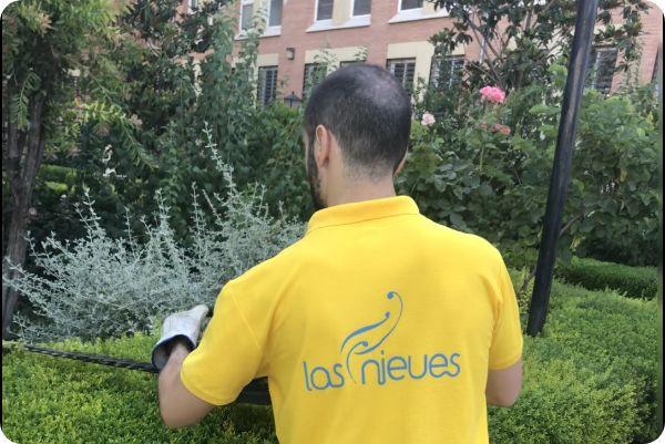 Hombre realizando servicios de mantenimiento de jardines